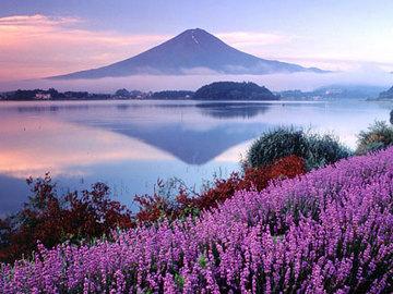 河口湖 富士五湖 : 静岡・伊豆・箱根・河口湖の観光・温泉 静岡・伊豆・箱根・河口湖の観光・温泉