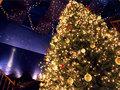 サンタクロースミュージアム クリスマスの森
