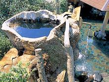 富士遊湯の郷 大野路 日帰り入浴