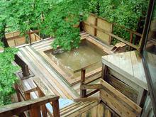 楽遊壽林自然館