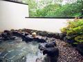仙石原 品の木 一の湯 日帰り温泉