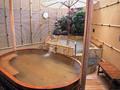 早雲足洗いの湯 和泉