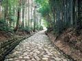 旧東海道石畳(金谷坂)